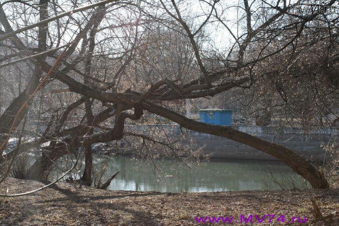 Аша стоит на берегу реки Сим